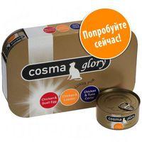 Cosma Glory в желе - Смешанная пробная упаковка (баночки)
