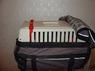 Чехол сумка на переноску лето (дождь 2), 2 молнии